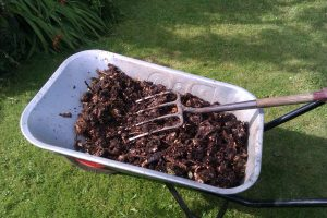 Kitchen food waste after six months in drum composter